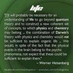 heisenberg life paradigm