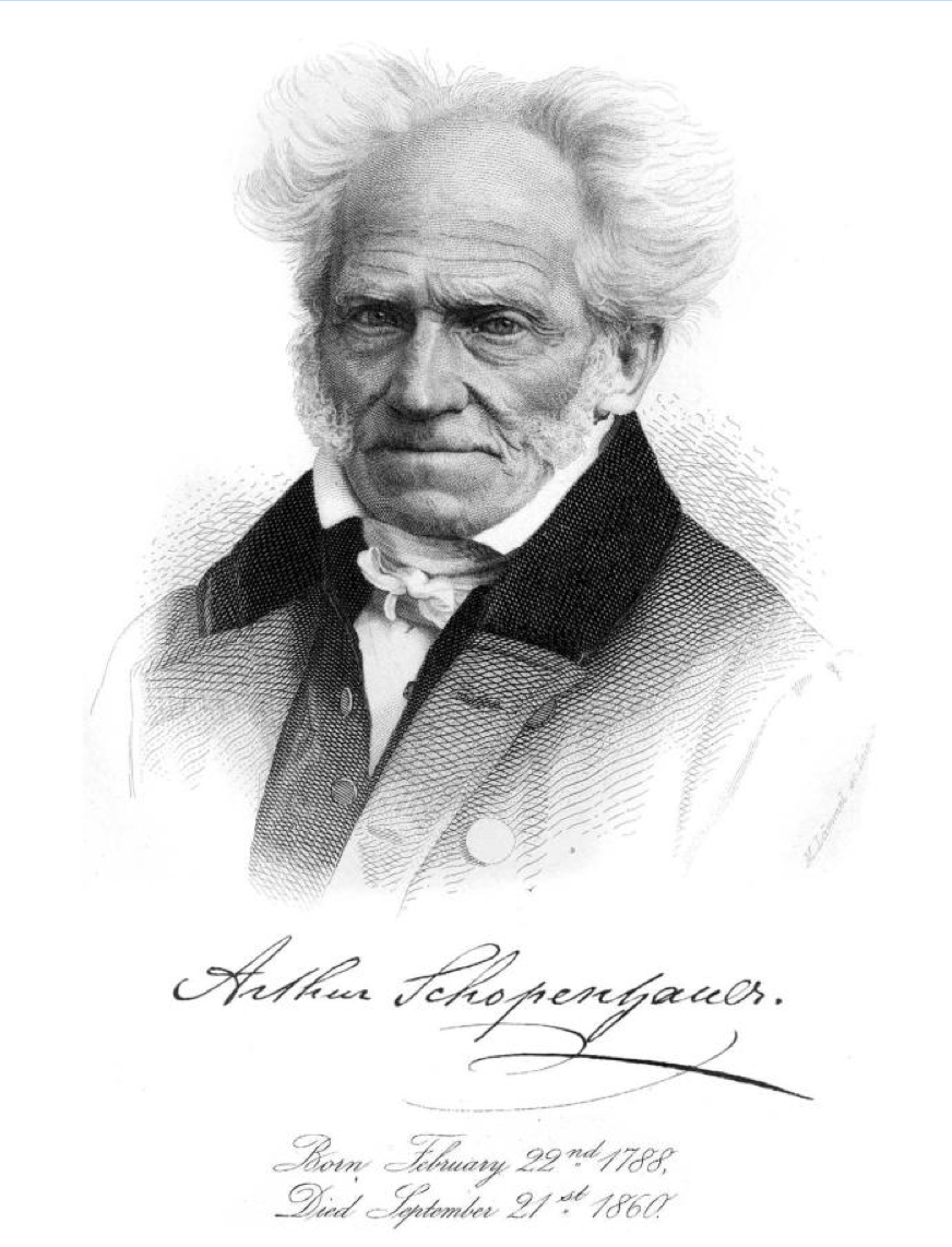 arthur schopenhauer transcendental idealism double aspect theory philosophy introduction nietzsche will wille to survive power noumenon