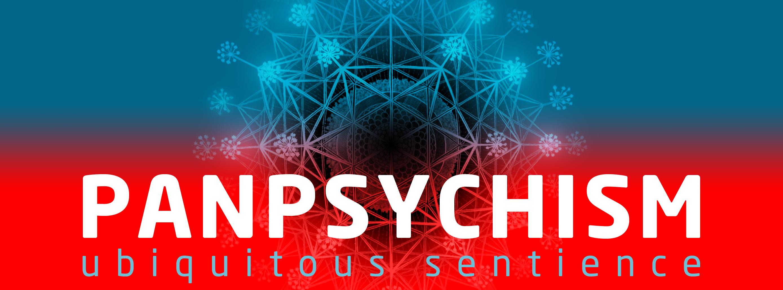 panpsychism consciousness sjostedt hylozoism animism philosophy mind matter